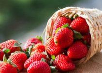 mascarilla de fresa y miel