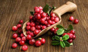 arandano rojo propiedades